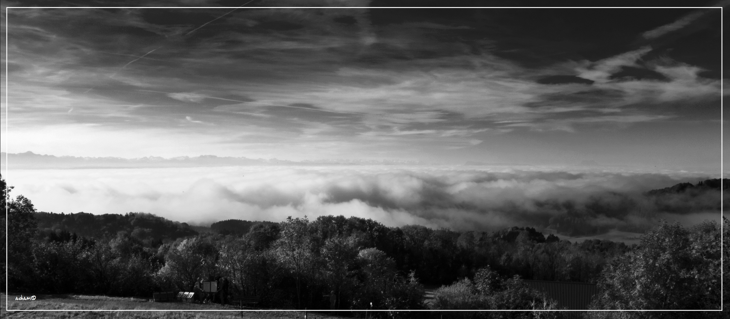 Der Nebel bringt schönes zum Vorschein