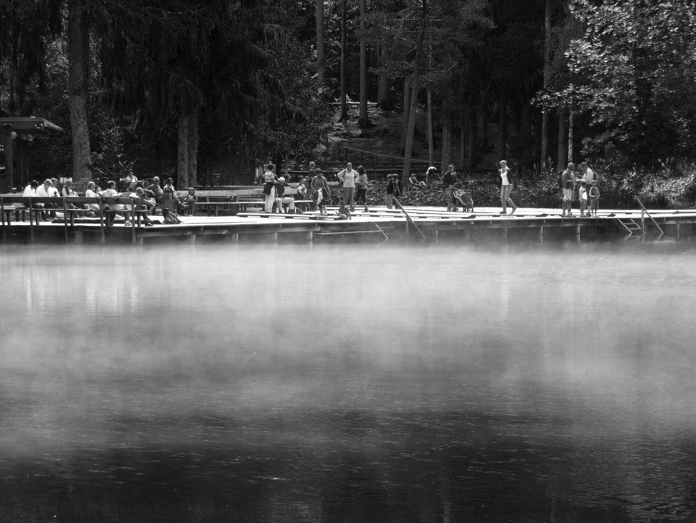 Der Nebel des Grauens....
