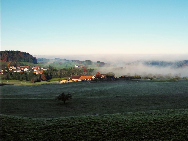 der Nebel geht und die Sonne kommt