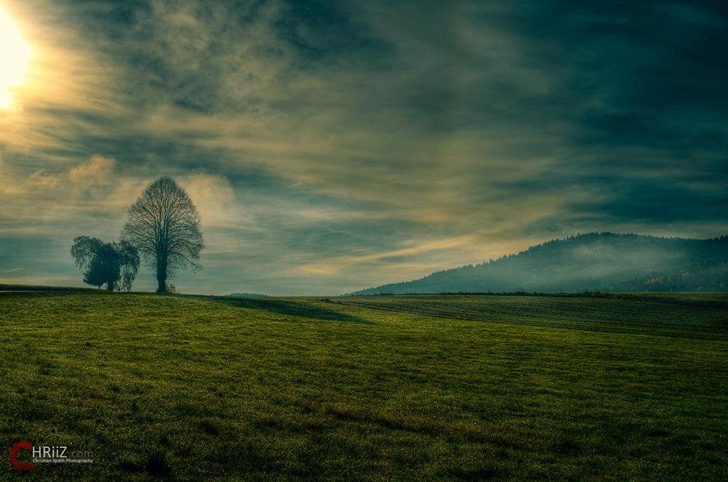 Der Nebel im Oktober...