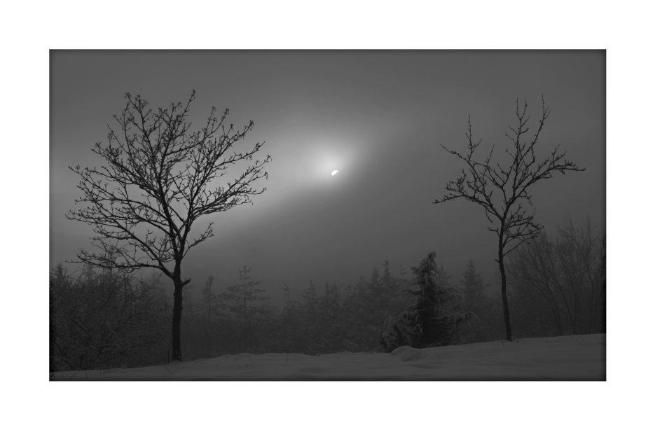 Der Nebel kommt....