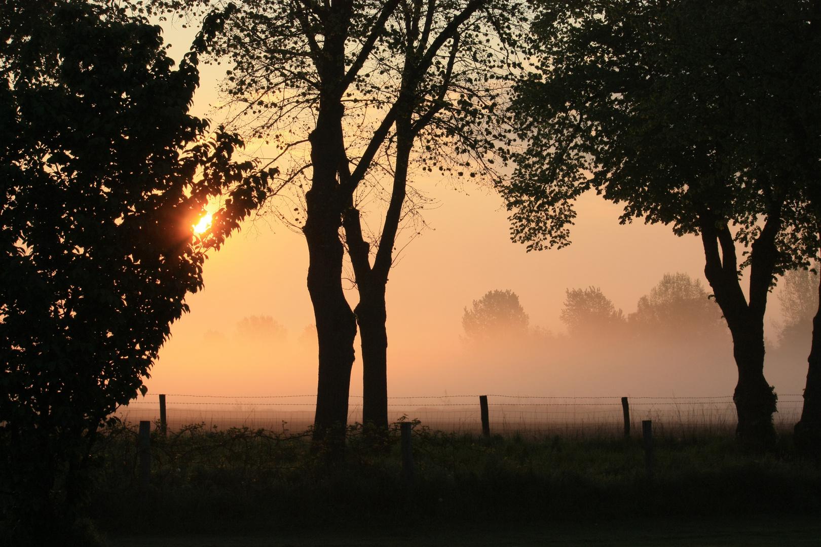 Der Nebel lichtet sich.