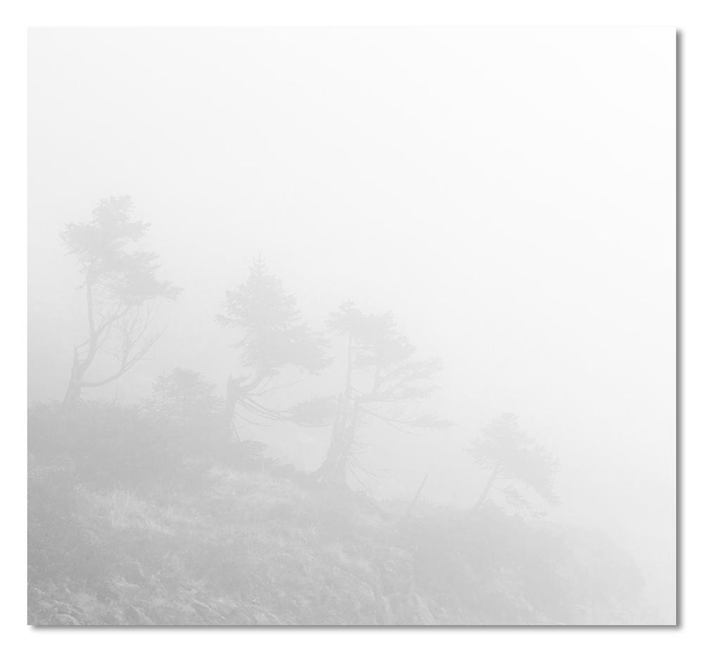 Der Nebel - Mordorexpedition # 2