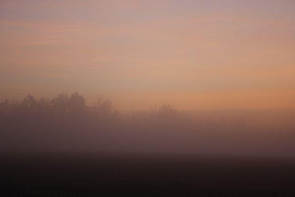 Der Nebel naht 2.......................