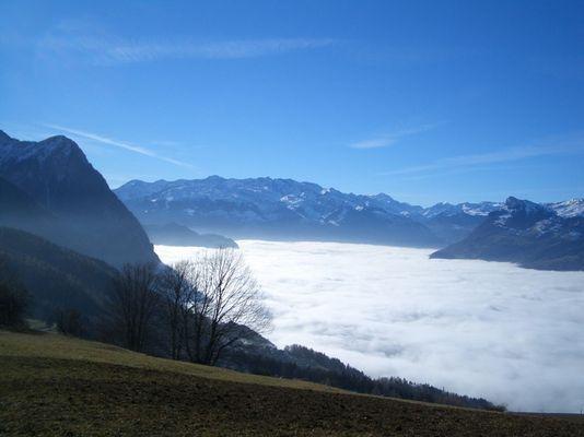 Der Nebel von seiner schönsten Seite