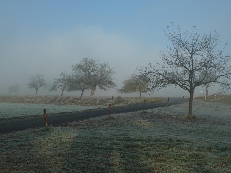 Der Nebel weicht
