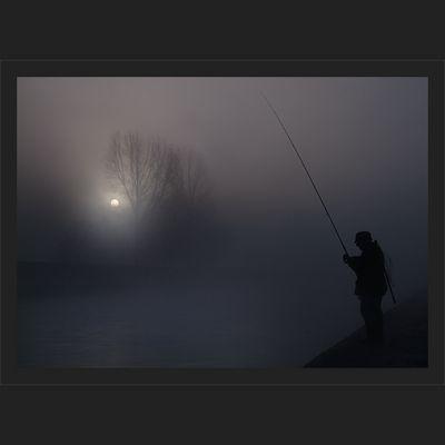 Der Nebelfischer