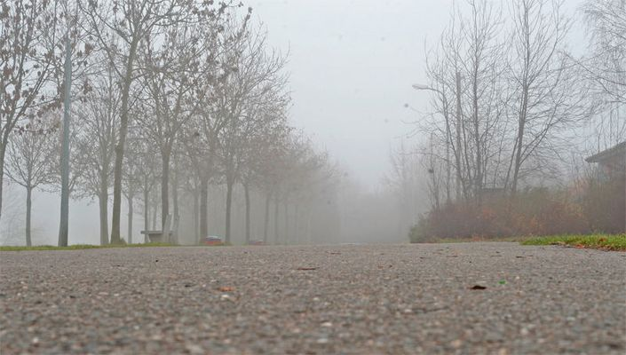 Der Nebelweg