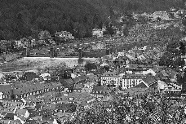 Der Neckar bei Heidelberg fließt wieder