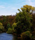 Der Neckar....jahreszeitlich fortgeschritten.....eine ältere Aufnahme
