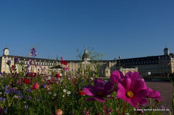 Der NEUE Schlossplatz in Karlsruhe