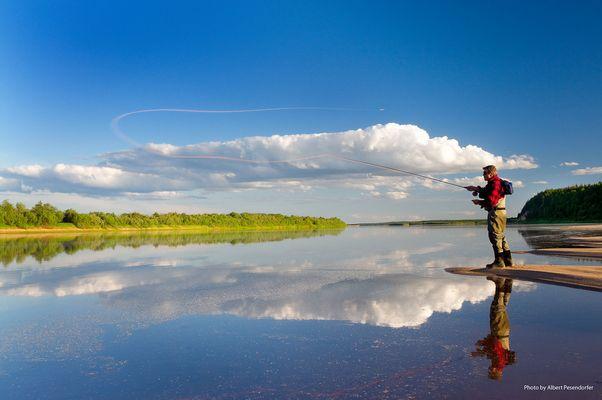 Der österreichische Fliegenfischer - Star Roman Moser in voller Aktion (nördliche Dwina, Rußland)