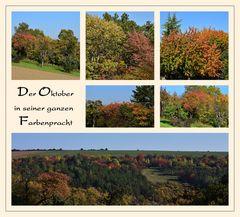 Der Oktober in seiner ganzen Farbenpracht