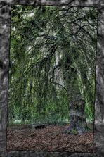 Der Opferbaum