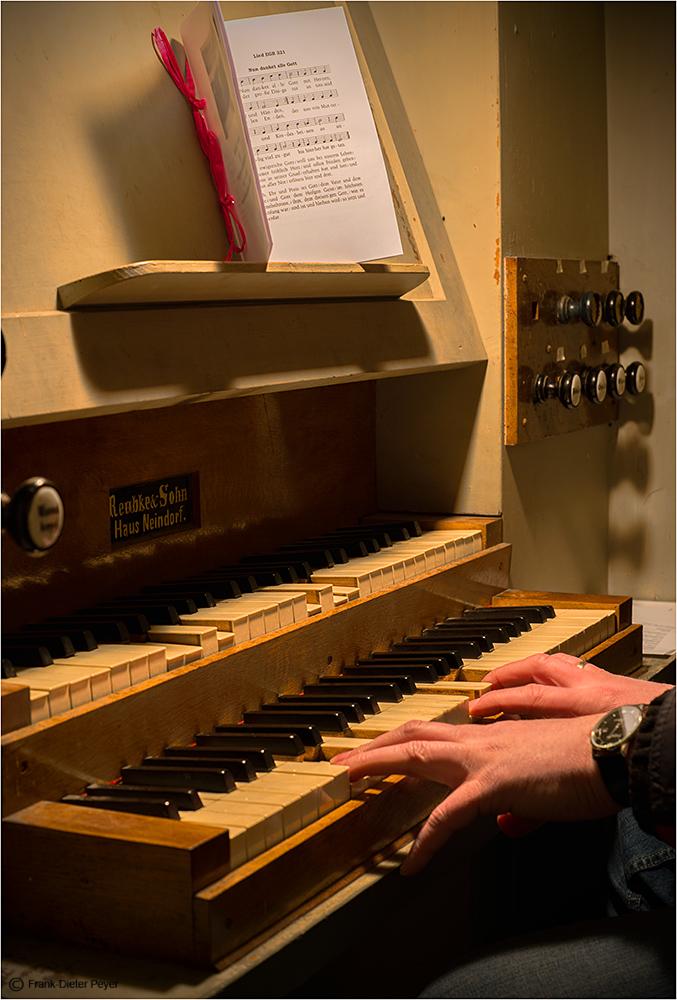 Der Organist