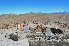 Der Patapampa-Pass liegt auf 4900 Metern Höhe.
