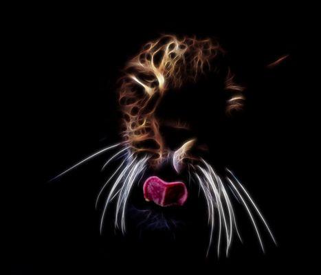 Der persische Leopard