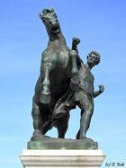 Der Pferdebändiger....