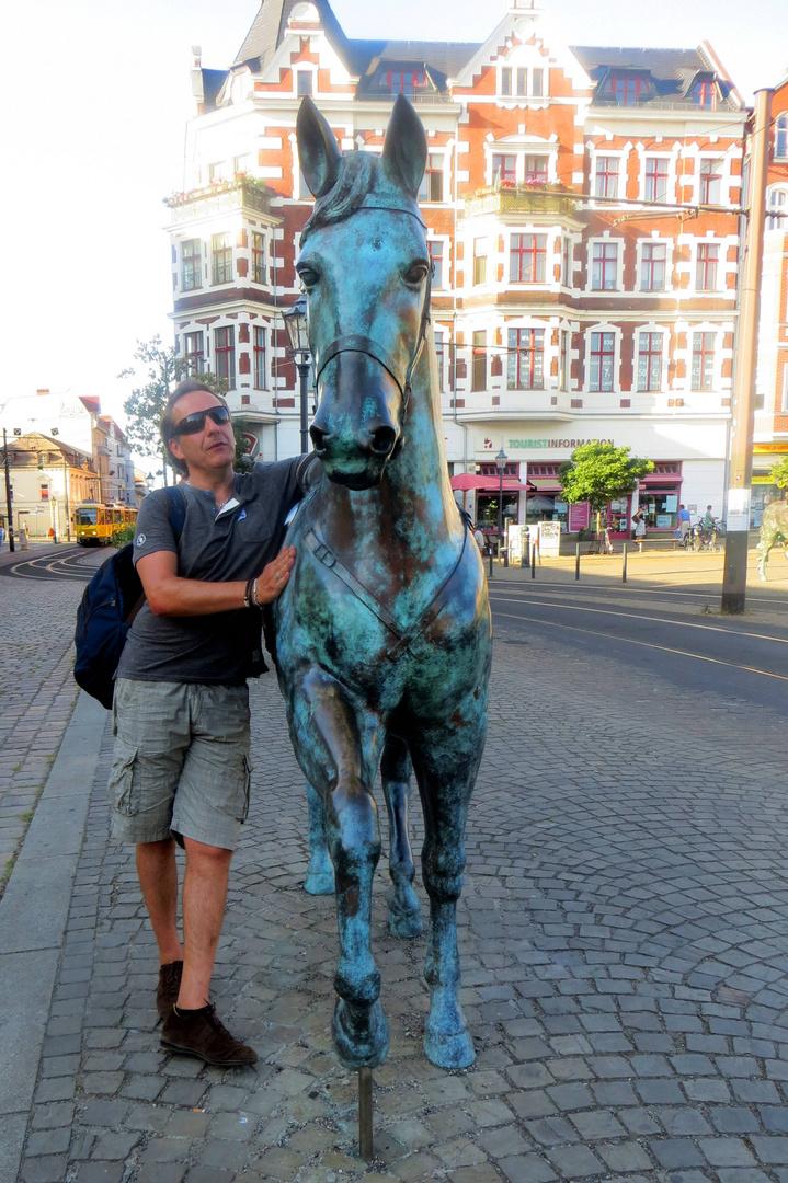 Der Pferdeflüsterer ...