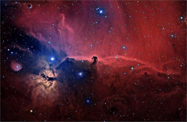 Der Pferdekopfnebel - eine Dunkelwolke (22h Belichtungszeit)