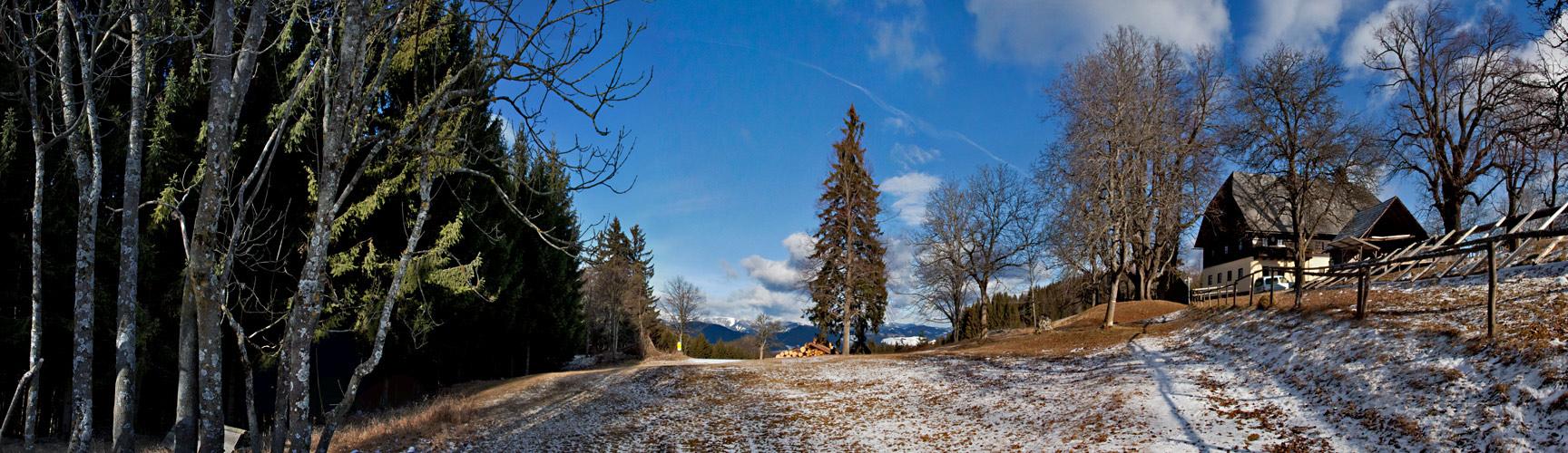 Der Plesch - ein beliebtes Ausflugsziel der Grazer!