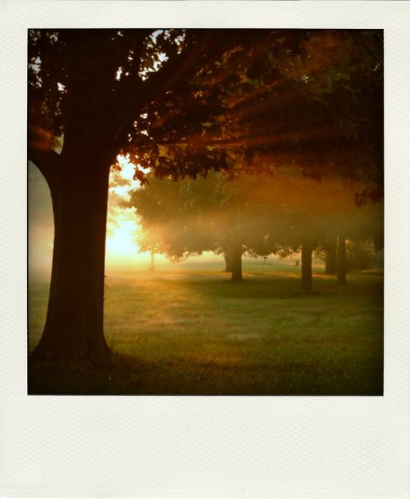 Der Polaroid-Park