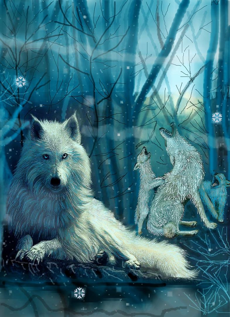 Der Polarwolf