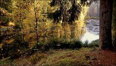 Der Poppelsee im Herbst...