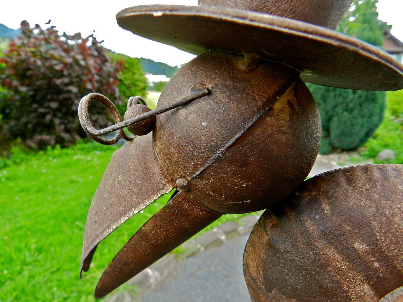 Der Rabe von vorne im Garten