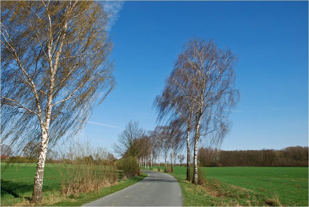Der Radweg ...