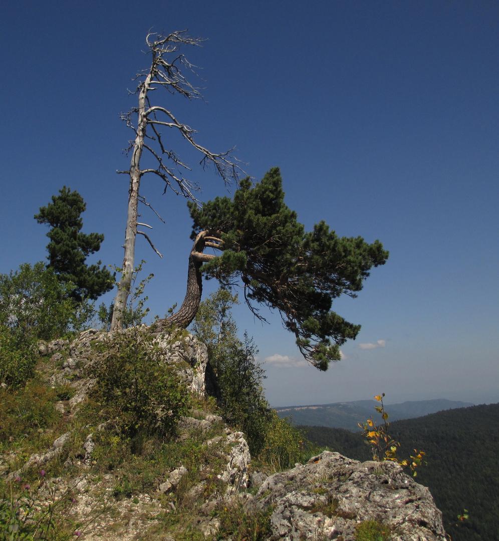 der Rand des Lago-Naki-Hochplateaus