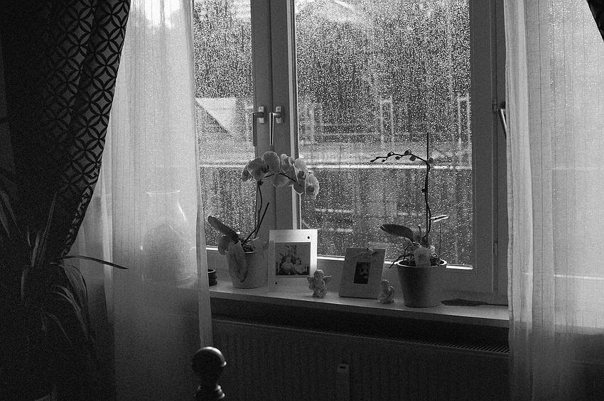 Der Regen.