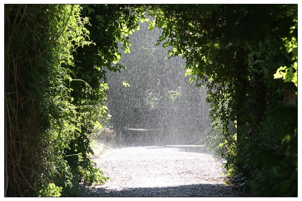 Der Regen fällt!!!