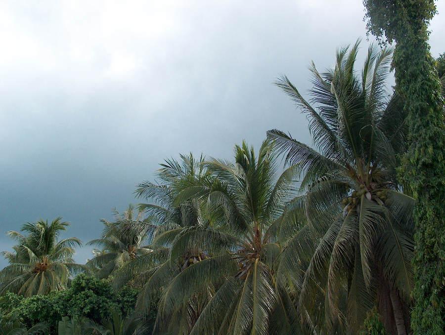 Der Regen kommt bestimmt