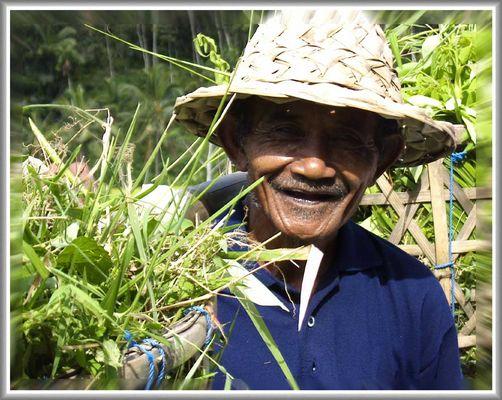 Der Reisbauer aus Bali