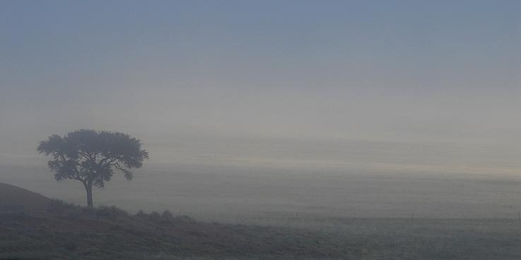 Der Reiz der kargen Landschaft
