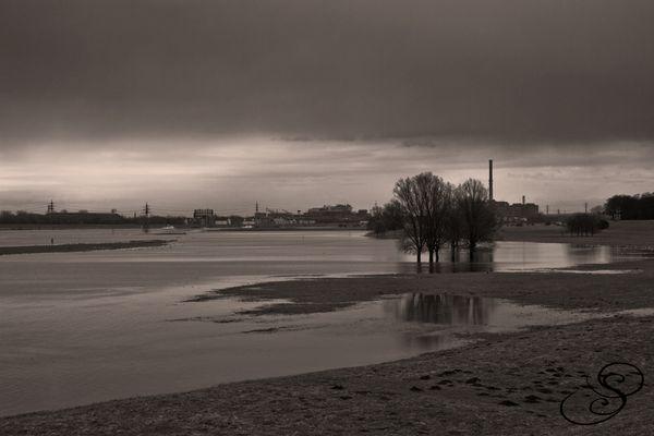 der Rhein...