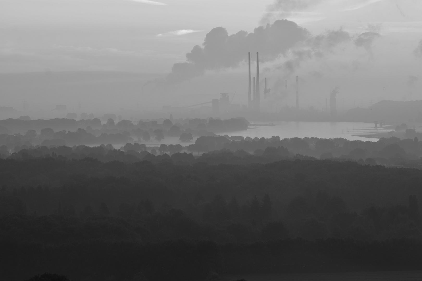 Der Rhein bei Duisburg Baerl am Morgen