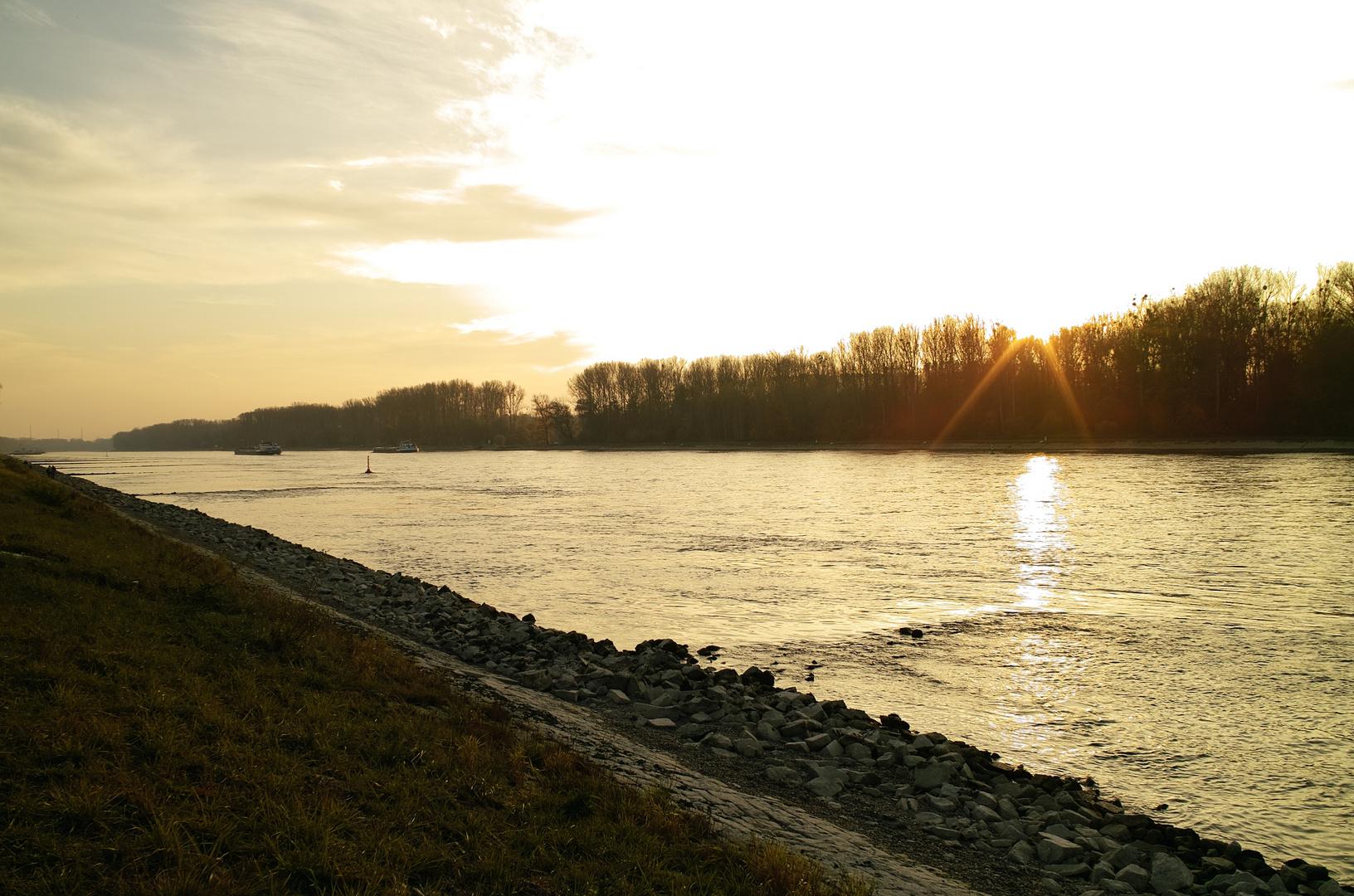 Der Rhein bei Leopoldshafen