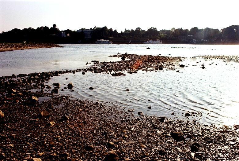 Der Rhein bei Niedrigwasser im Gegenlicht