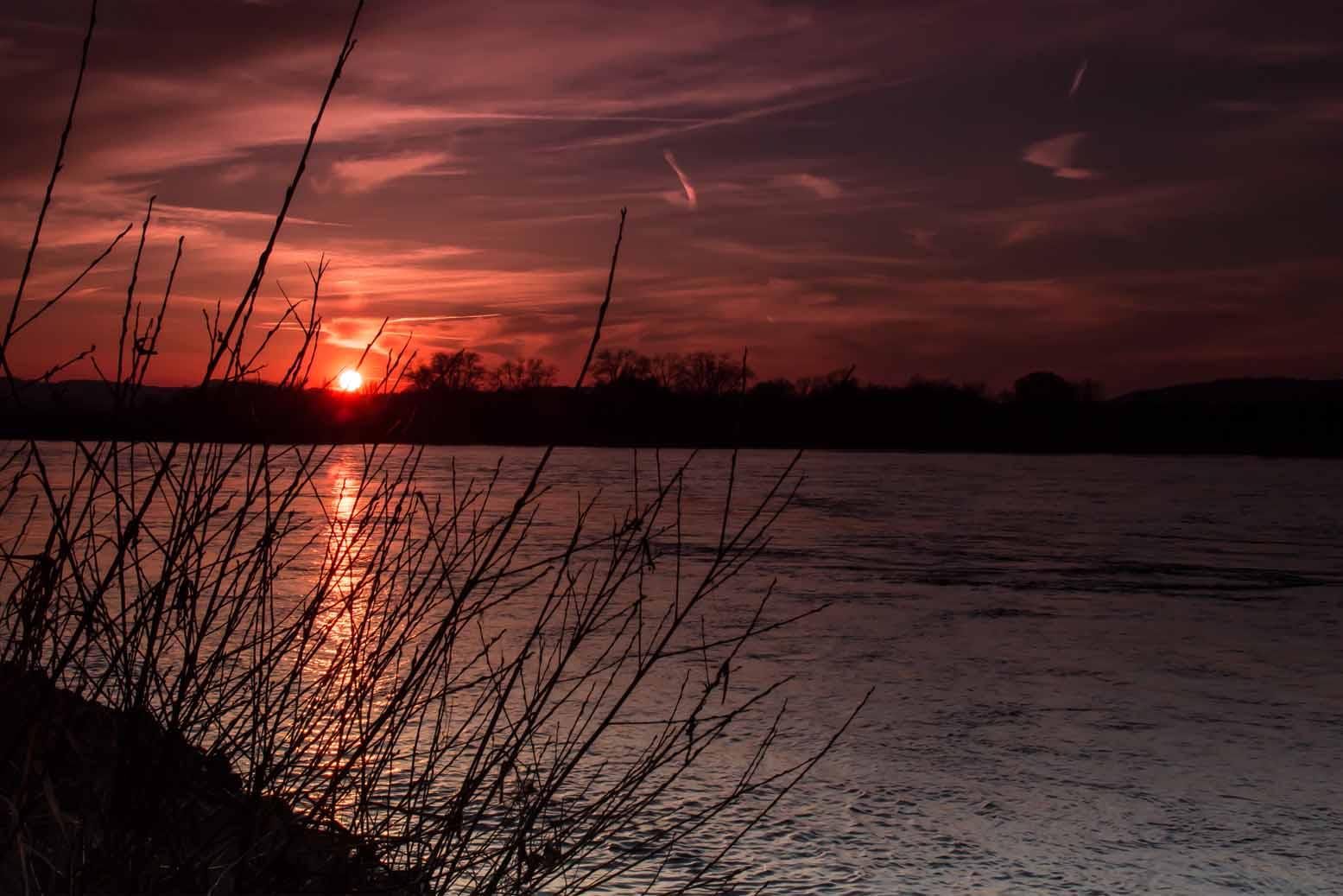 Der Rhein bei Urmitz/Rhein #1
