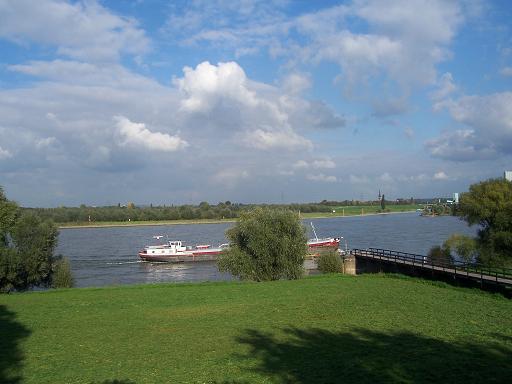der Rhein im Herbst