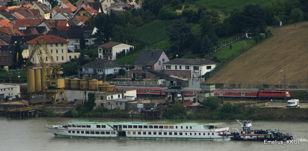 Der Rhein und seine Züge