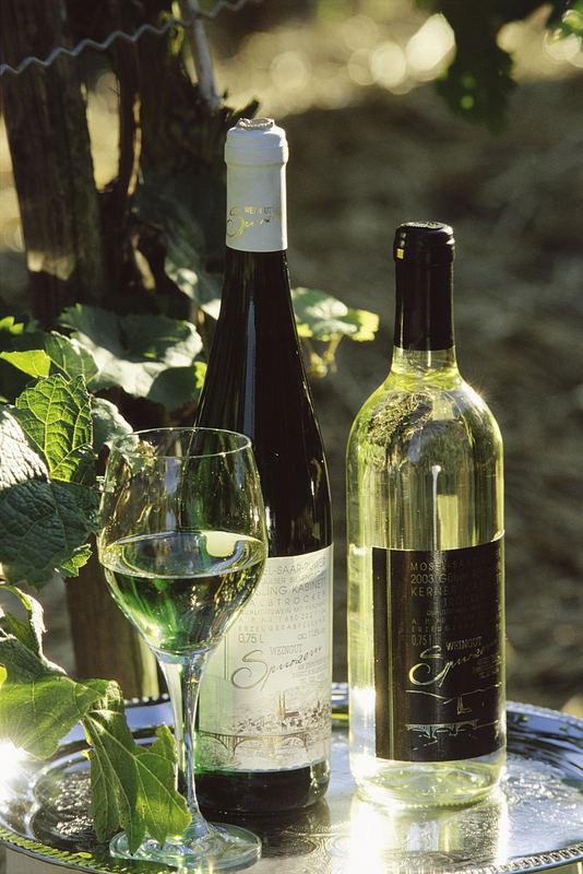 Der Riesling vom Weingut Spurzem in Koblenz-Güls