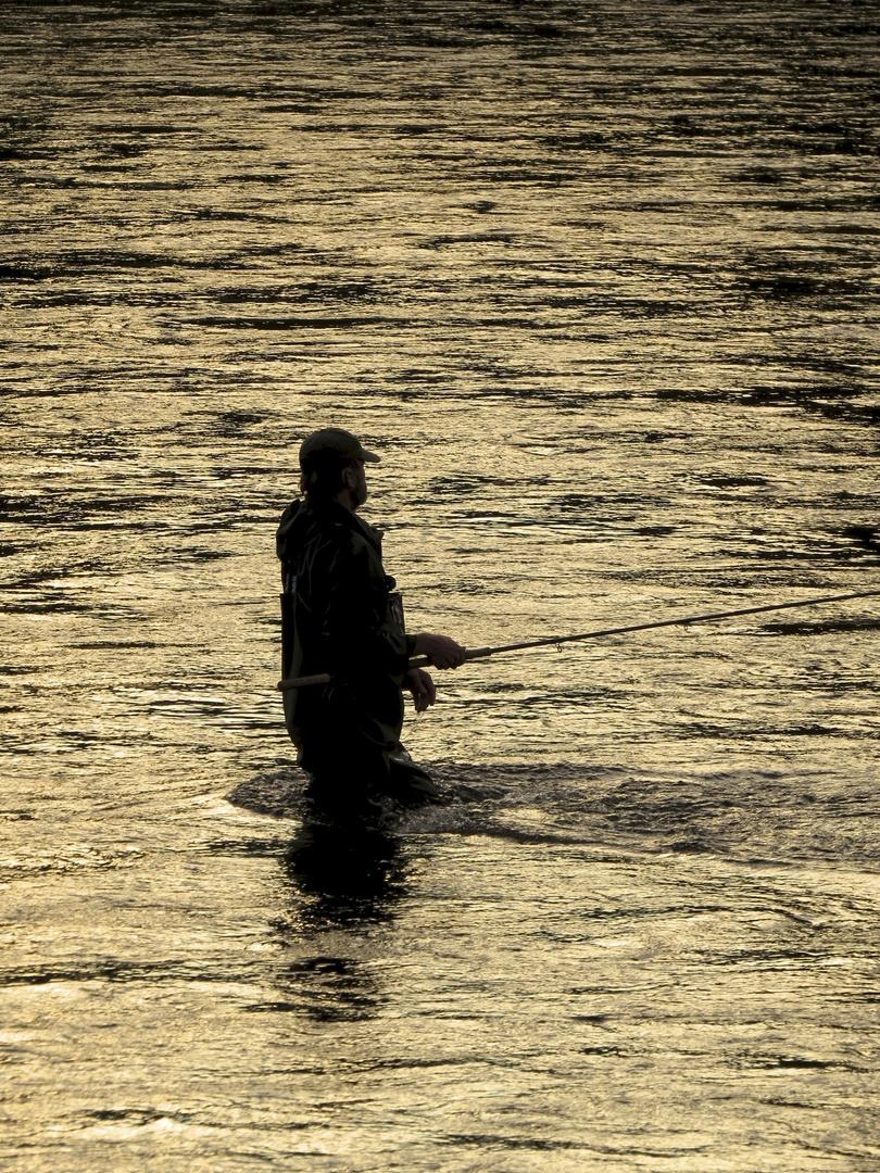 """""""Der Rolf, der im Wasser steht"""""""