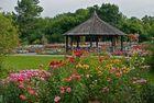 Der Rosenpavillon - Botanischer Garten Augsburg