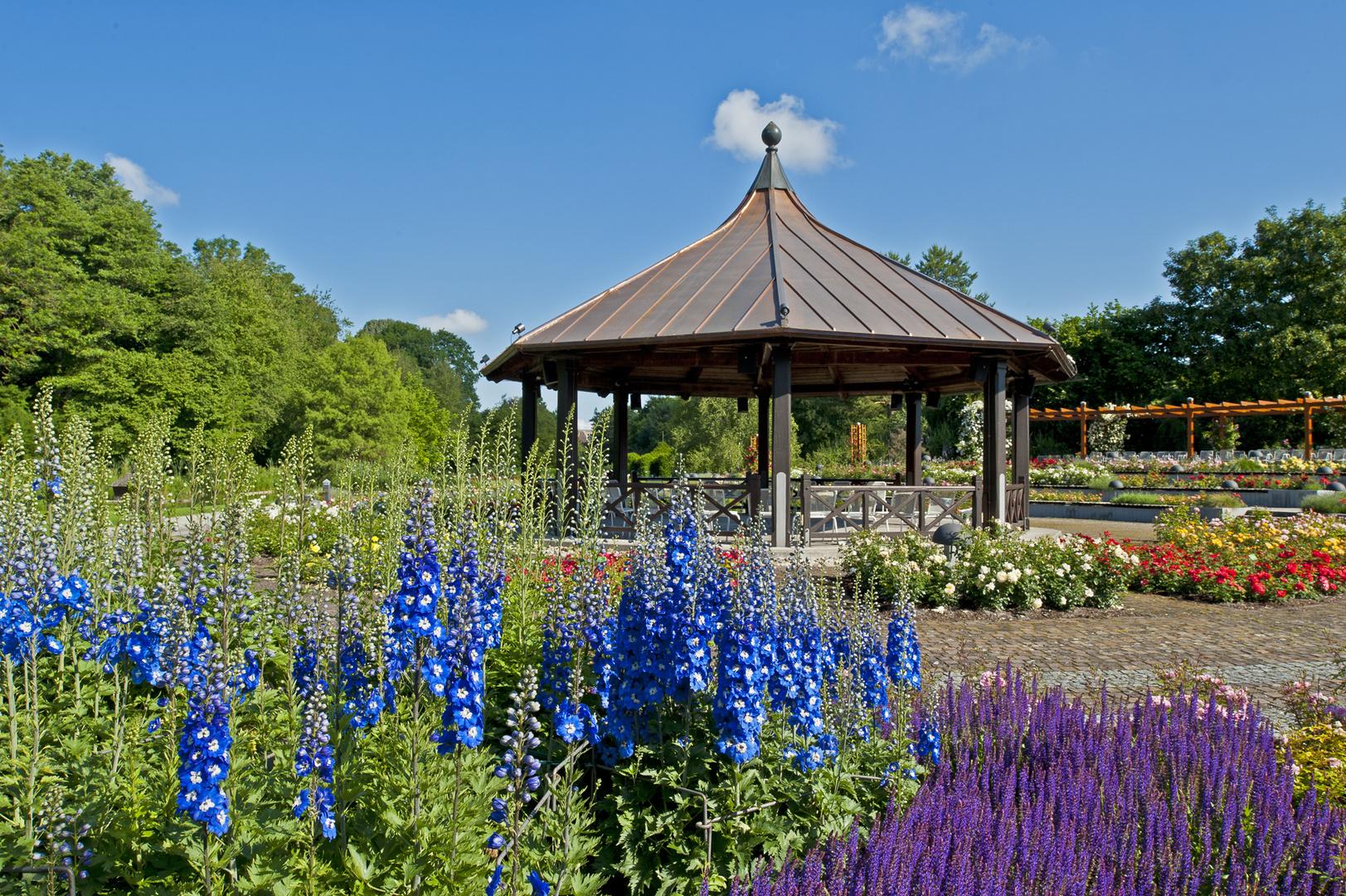 Der Rosenpavillon mit Rittersporn