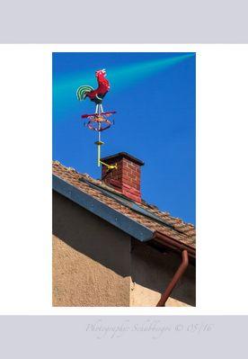 Der Rote Hahn auf dem Dach