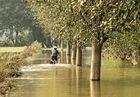 Der Ruhrtalradweg in Schwerte mit Hochwasser_2