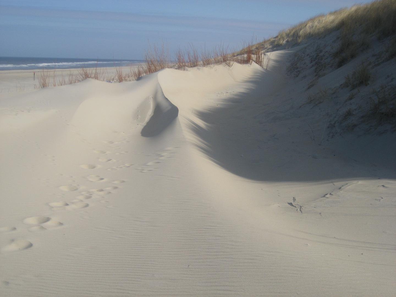 Der Sand